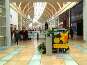 Shopping Centre guide St Davids Level 1