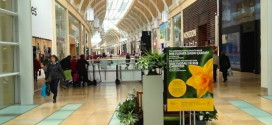 St David's shopping centre in Cardiff celebrates five years and 190 million people passing through its doors
