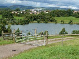 Cwm Hedd Lakes Basseleg