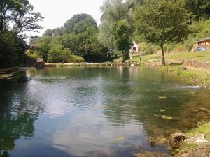 Fly fishing - Big Well Fly Fishery