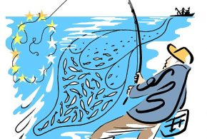 Bass Fine for anglers