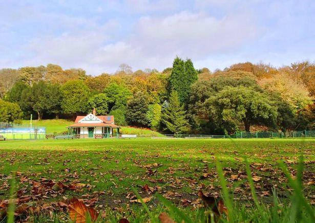 Cwmdonkin Park Swansea